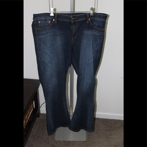 Torrid Source of Wisdom Jeans